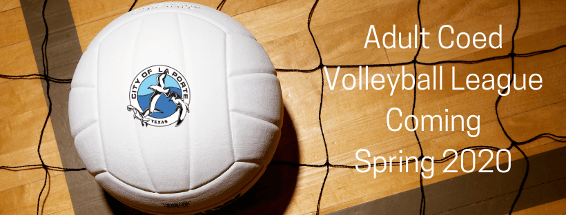 Adult Volleyball Web Cover